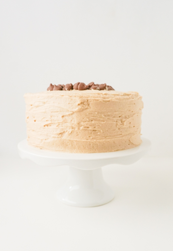 Chocolate Chip Mocha Cake