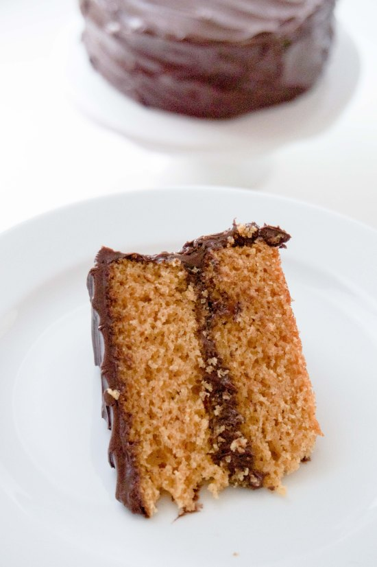 Graham Cracker Cake with Chocolate Frosting