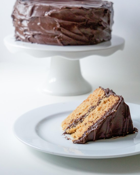 Graham Cracker Cake with Chocolate Frosting7