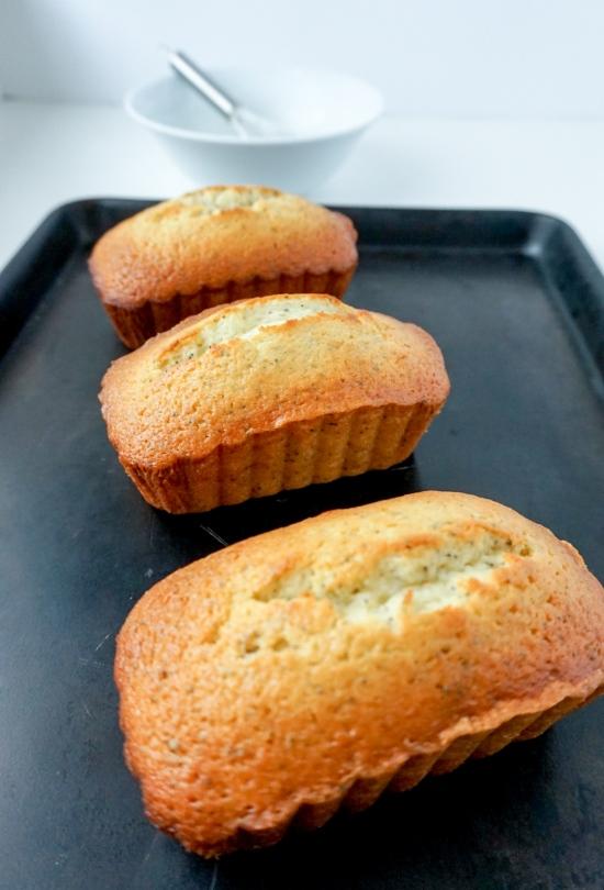 Lemon Poppy Seed Bread 5